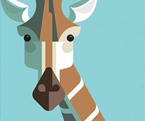Flora Fauna: Illustrations by Josh Brill