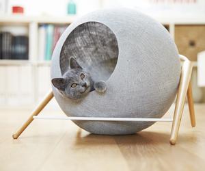 Meyou Designs Stylish Cat Beds