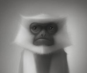 Art by Gediminas Pranckevicius.