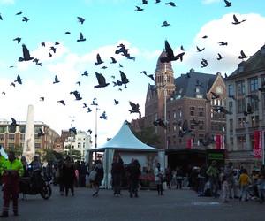 WHUDAT in Amsterdam: Hogirs Vlog #2