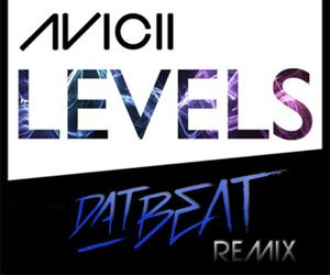 Aviciis Levels remix by DatBeat