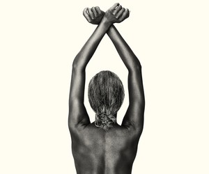 "Brian Bowen Smith ""Wildlife"" Photography"