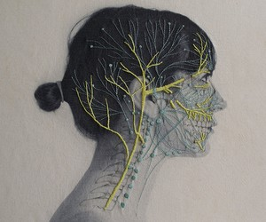 Embroidered Anatomy of Juana Gómez
