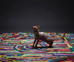 Gooey Rainbow Carpet Art by NIGHTSHOP