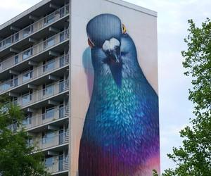 pigeon murals by super a