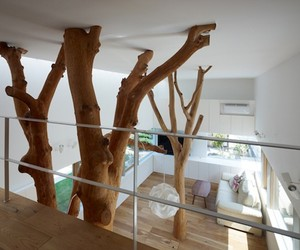 Giant Trees Inside Japanese Home