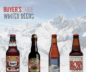 Best Winter Beers