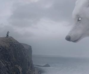 "Zacari - ""Lone Wolf"" // Video"