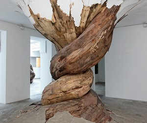 Tree Trunks and Roots Burst Through Gallery Walls