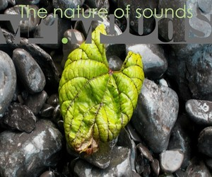 """Mr. Moods – """"The Nature Of Sounds"""" (Free EP)"""