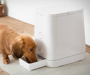 Petly | Automatic Pet Feeder