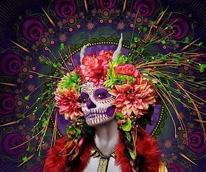 Las Muertas - Dark-colored photographs by Tim Tadd