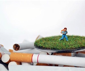 Miniature landscapes provide food for thought