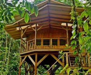 Costa Rican Adventures in Tree Houses